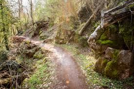 16 Trails