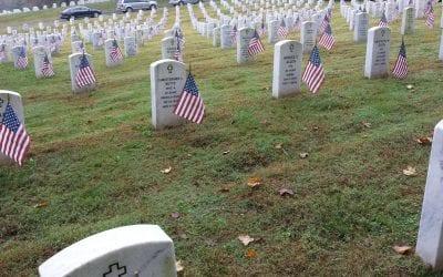 VHS Volunteers Assist with Veterans Day Activities