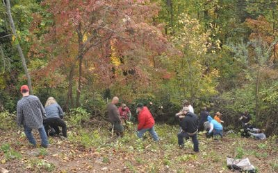 Fall Clean-Up at the Ridge