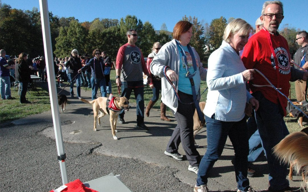 VHSF War Dog Memorial Dog March